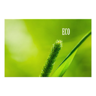 Green Grass And Sun - Eco Photo Print