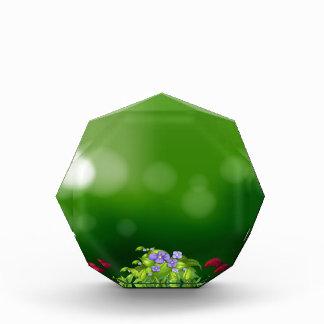 Green grass award