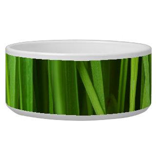 Green Grass background Bowl