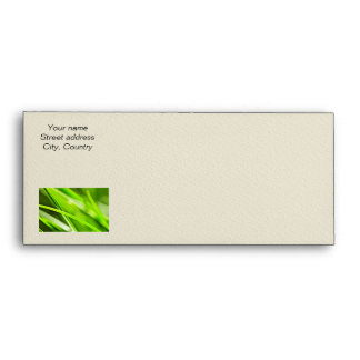 Green grass background envelope