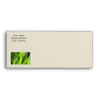 Green grass background envelopes