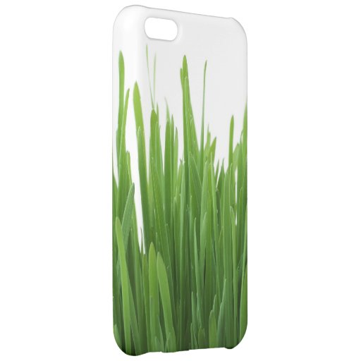 Green Grass background iPhone 5C Covers
