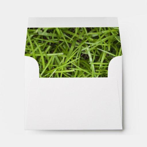 Green Grass Backyard Wedding RSVP Envelope