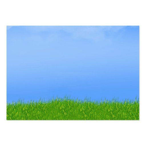 Green Grass u0026 Blue Sky Background Large Business Cards ...