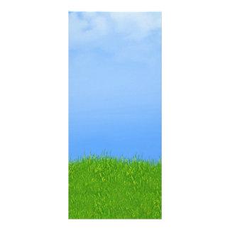 Green Grass & Blue Sky Background Rack Card