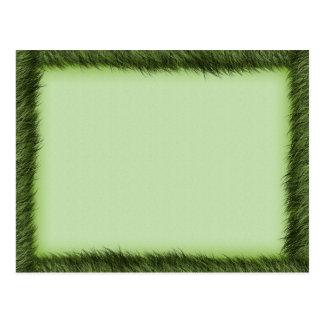 Green grass border on light green postcard