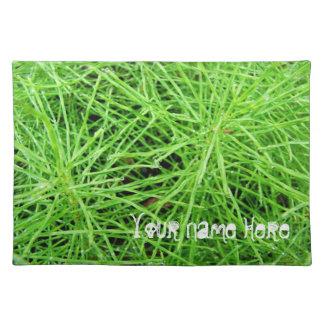 Green Grass Fireworks; Customizable Cloth Placemat
