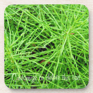 Green Grass Fireworks; Customizable Coasters