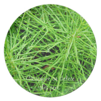 Green Grass Fireworks; Customizable Party Plates