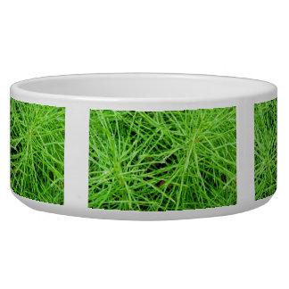 Green Grass Fireworks; No Text Bowl