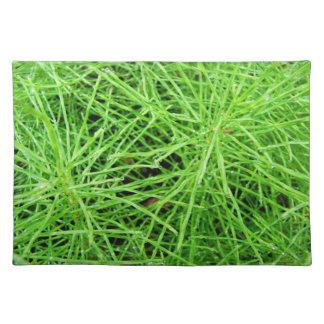Green Grass Fireworks; No Text Cloth Placemat