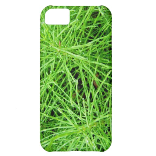 Green Grass Fireworks; No Text iPhone 5C Cases