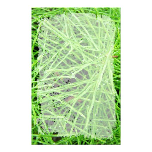Green Grass Fireworks; No Text Stationery Design
