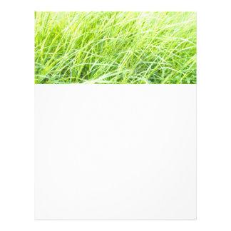 Green grass flyer