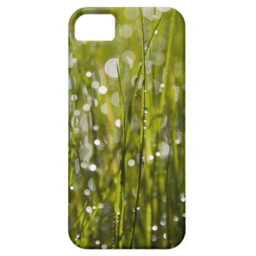 Green Grass iPhone 5 Cover