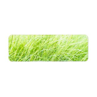 Green grass custom return address label