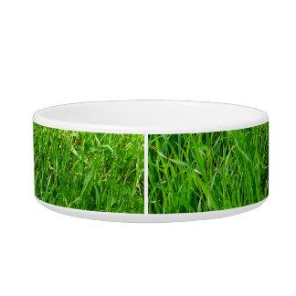 Green Grass Photograph Bowl