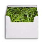 Green Grass RSVP Response Card Envelope
