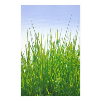 Green grass stationery