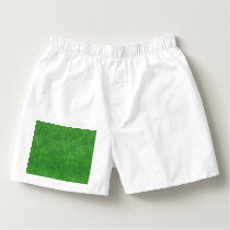 Green Grass Texture Abstract Background Boxers