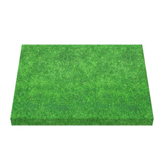 Green Grass Texture Abstract Background Canvas Print