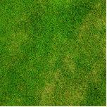 Green Grass Texture Acrylic Cut Out
