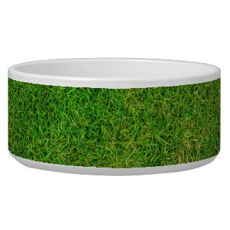 Green Grass Texture Bowl