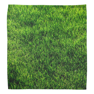 Green grass texture from a soccer field bandana