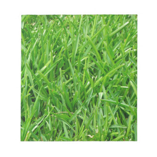 Green grass wallpaper design memo pads