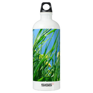 green grass with blue sky aluminum water bottle