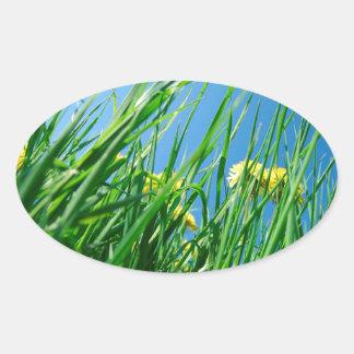 green grass with blue sky oval sticker