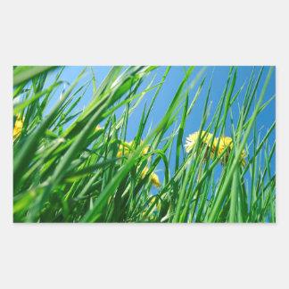 green grass with blue sky rectangular sticker
