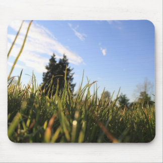 green grasses and blue sky, early summer time, sun mouse pad