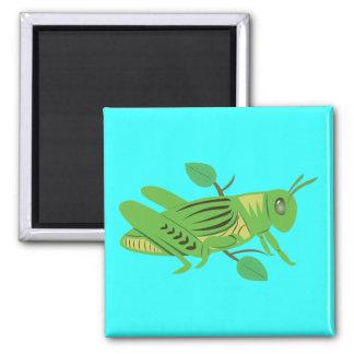 Green Grasshopper 2 Inch Square Magnet