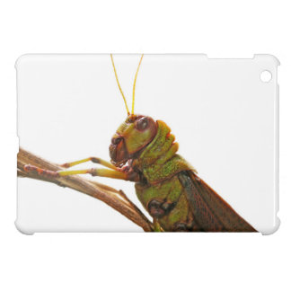 Green Grasshopper close up details Case For The iPad Mini