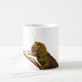 Green Grasshopper close up details Coffee Mug