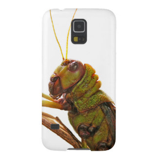 Green Grasshopper close up details Galaxy S5 Cover