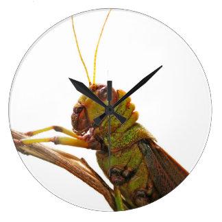 Green Grasshopper close up details Large Clock