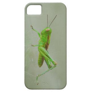 Green Grasshopper iPhone SE/5/5s Case