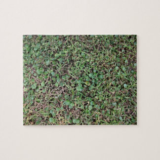 Green grassy ground jigsaw puzzles