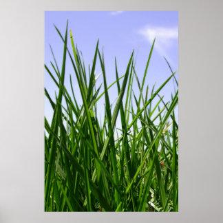 Green Green Grass Of Home print