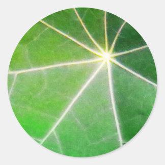 GREEN GREEN LEAF fresh healthy gift Classic Round Sticker