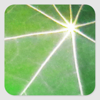 GREEN GREEN LEAF fresh healthy gift Square Sticker
