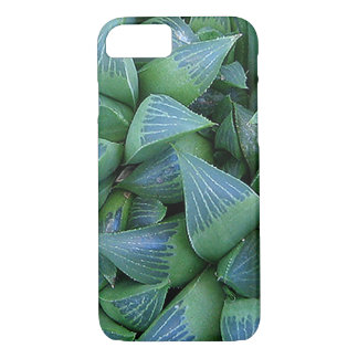 Green Haworthia Succulent Plants iPhone Case