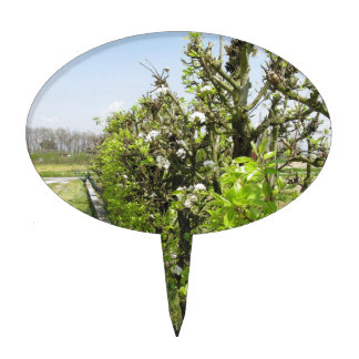 Green hedge of pear and apple trees with blue sky cake topper