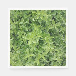 Green Hedge Shrub Type Plant Photograph Napkin