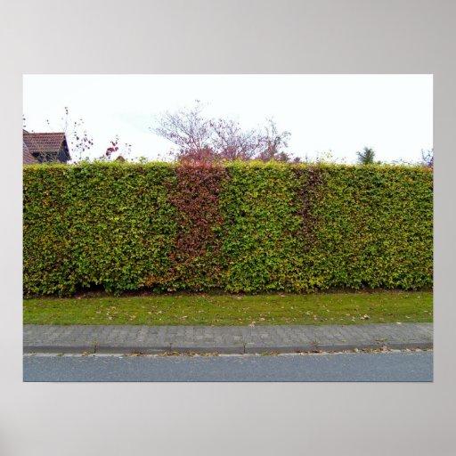 Green hedge texture print