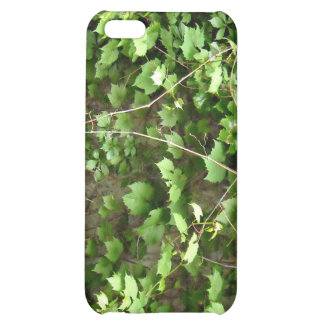 Green Hedge with tiny yellow flowers iPhone 5C Cases