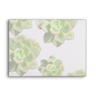 Green Hen and Chicks Succulents Envelopes