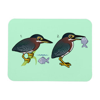 Green Heron Hunting Technique Magnet